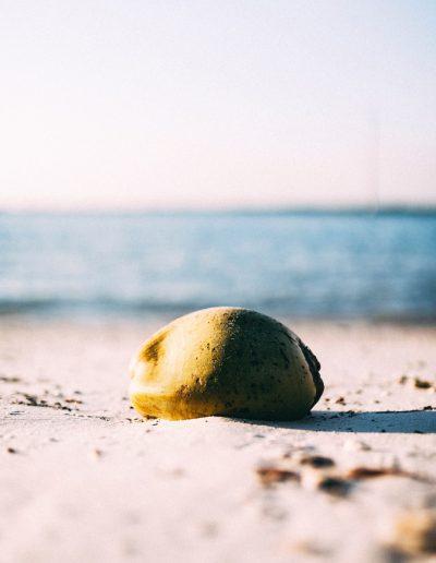 Beach at golden hour. Stone on the beach